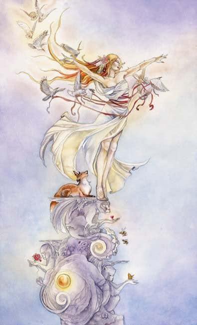 Cảm Nhận Lá Bài The Fool Trong Shadowscapes Tarot