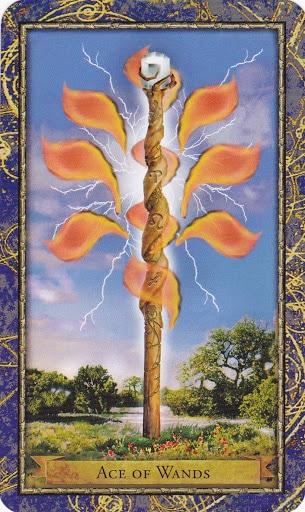 Ý nghĩa lá Ace of Wands trong bộ bài Wizards Tarot