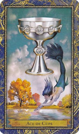 Ý nghĩa lá Ace of Cups trong bộ bài Wizards Tarot