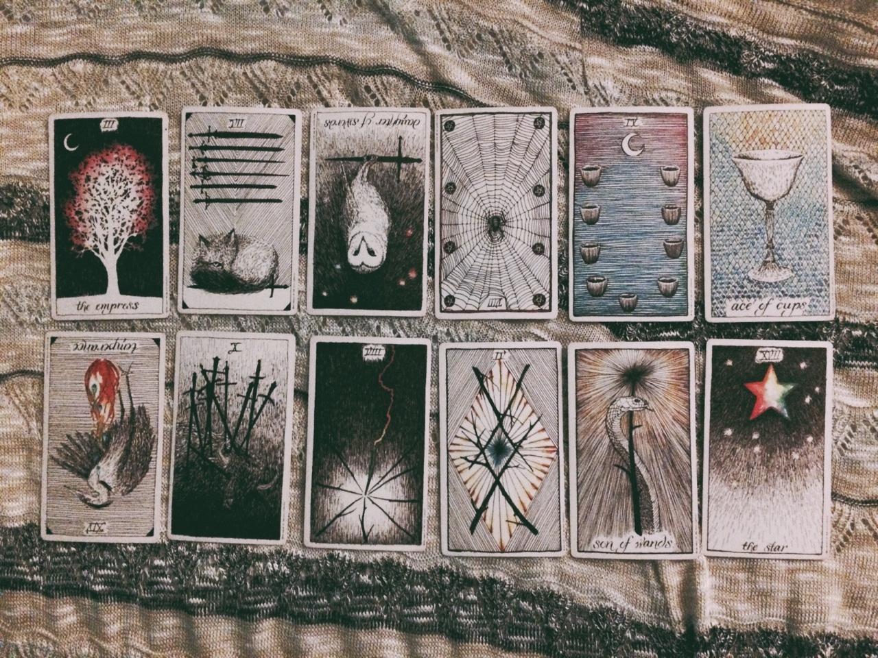 Cảm Nhận 10 Lá Pentacles Trong Wild Unknown Tarot