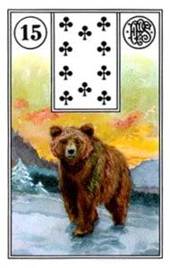 Lenormand 15 Bear