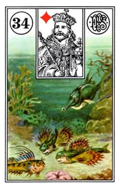 Kết Hợp Lá Bài Lenormand Fish (34)