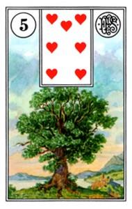 Lenormand 5 Tree
