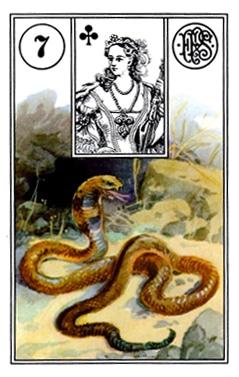 Kết Hợp Lá Bài Lenormand Snake (7)