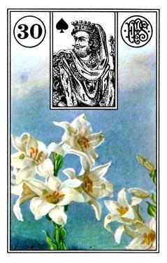 Ý Nghĩa Lá Bài Lenormand Lily (30)