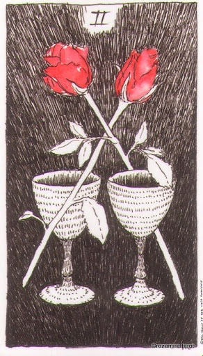 Lá Two of Cups – Wild Unknown Tarot