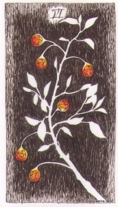 Wild Unknown Pentacles 6