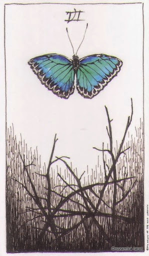 Lá Six of Wands – Wild Unknown Tarot