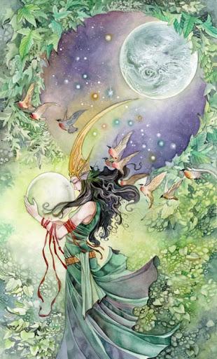 Shadowscapes Tarot – Sách Hướng Dẫn