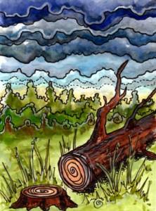 Lá Death trong bộ Tarot of Trees