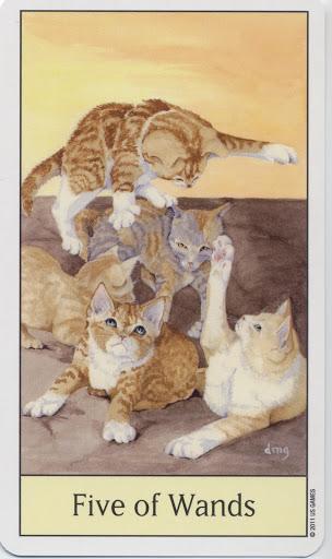 Lá Five of Wands - Cat's Eye Tarot