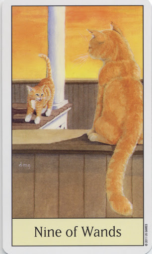 Lá Nine of Wands - Cat's Eye Tarot