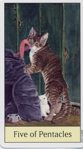 Lá Five of Pentacles - Cat's Eye Tarot