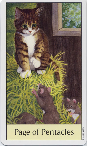 Lá Page of Pentacles - Cat's Eye Tarot