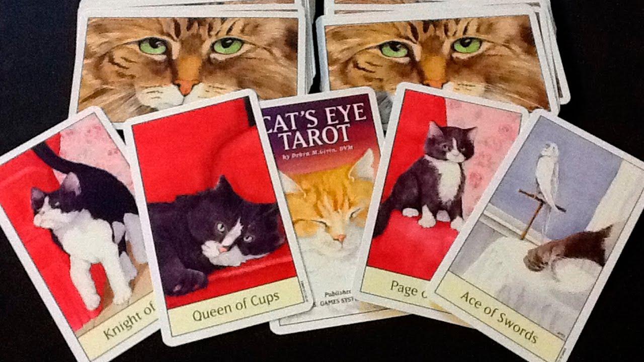 Cat's Eye Tarot – Sách Hướng Dẫn
