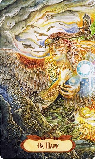 Lá 15. Hawk – Winged Enchantment Oracle