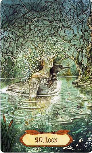 Lá 20. Loon – Winged Enchantment Oracle