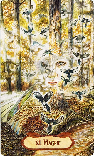 Lá 21. Magpie – Winged Enchantment Oracle