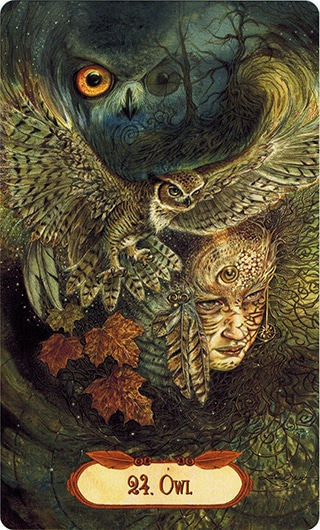 Lá 24. Owl – Winged Enchantment Oracle