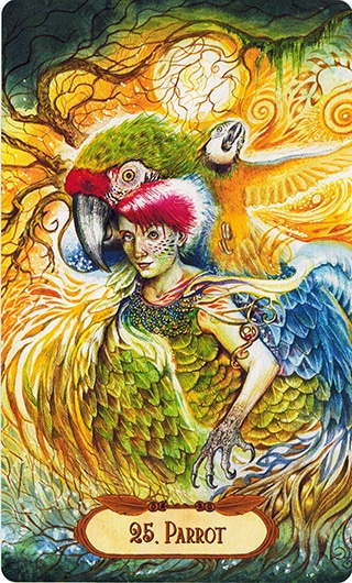 Lá 25. Parrot – Winged Enchantment Oracle