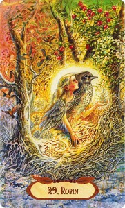 Winged Enchantment Oracle 29