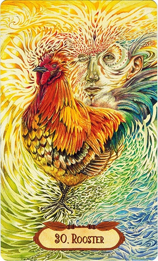 Lá 30. Rooster - Winged Enchantment Oracle
