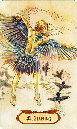 Lá 33. Starling - Winged Enchantment Oracle