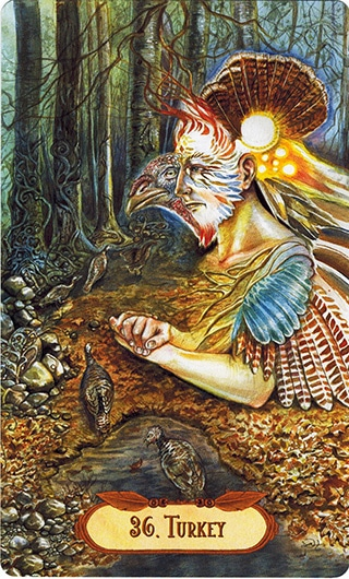 Lá 36. Turkey – Winged Enchantment Oracle