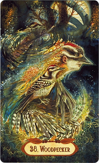 Lá 38. Woodpecker - Winged Enchantment Oracle