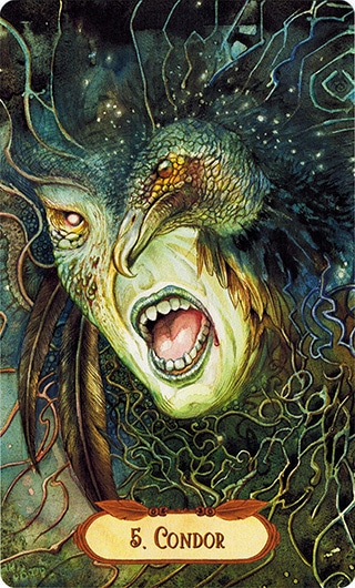 Lá 5. Condor – Winged Enchantment Oracle