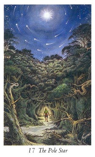 Lá 17. The Pole Star trong bộ bài Wildwood Tarot