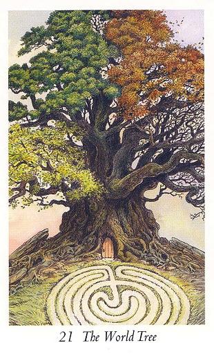 Lá 21 The World Tree trong bộ bài Wildwood Tarot
