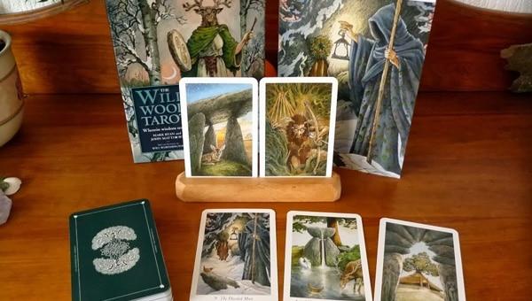 Wildwood Tarot – Sách Hướng Dẫn
