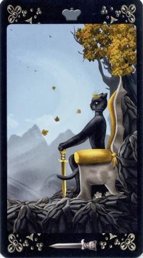 Lá Queen of Swords – Black Cats Tarot