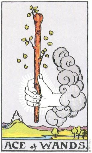 Ý Nghĩa Biểu Tượng 78 Lá Bài Tarot – Ace of Wands
