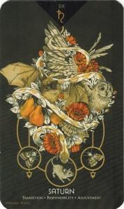 Cosmos Tarot & Oracle - Sách Hướng Dẫn 6