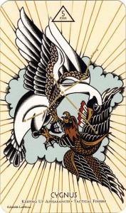 Ý nghĩa lá 5 of Fire trong bộ Cosmos Tarot