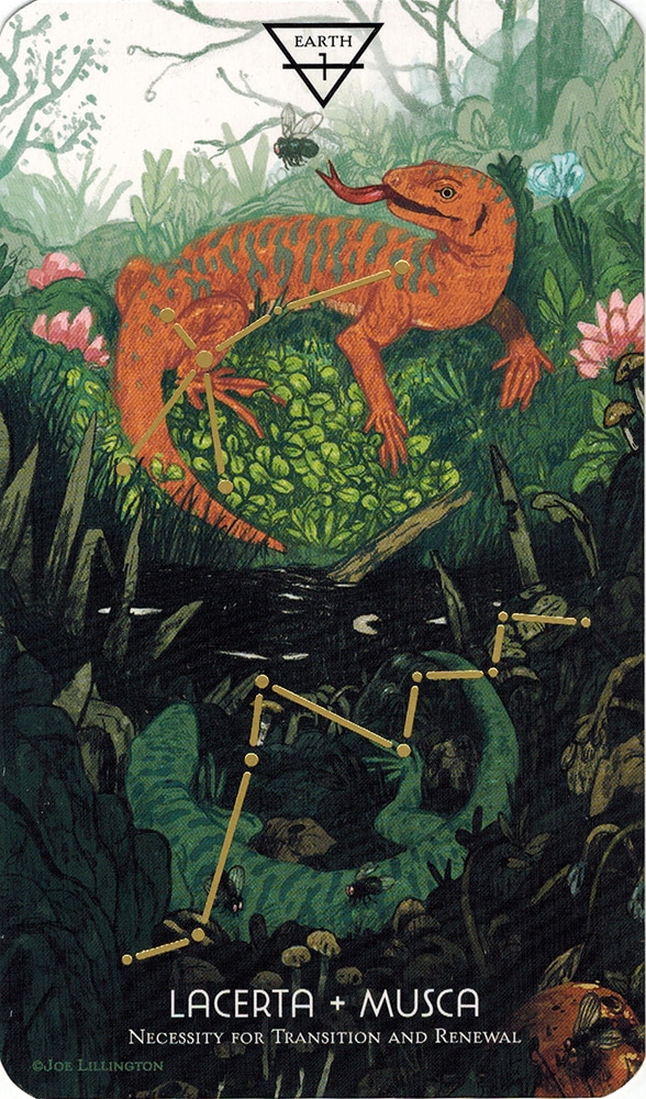 Ý nghĩa lá Ace of Earth trong bộ Cosmos Tarot