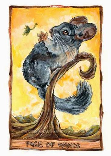 Animism Tarot - Sách Hướng Dẫn 33