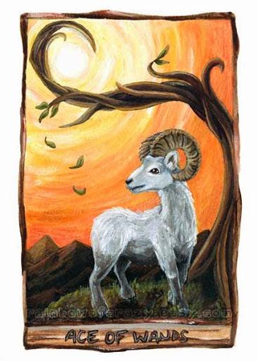 Animism Tarot - Sách Hướng Dẫn 23