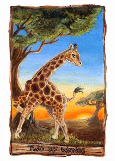 Animism Tarot - Sách Hướng Dẫn 24