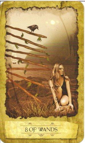 Ý nghĩa lá 8 of Wands trong bộ Mystic Dreamer Tarot