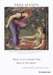 Art of Life Tarot - Sách Hướng Dẫn 46