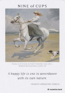 Art of Life Tarot - Sách Hướng Dẫn 44