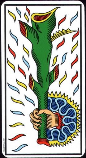 Ý nghĩa lá Ace of Wands trong bộ Tarot of Marseilles