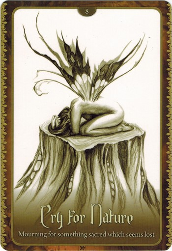 Ý nghĩa lá Cry For Nature trong bộ Wild Wisdom of The Faery Oracle
