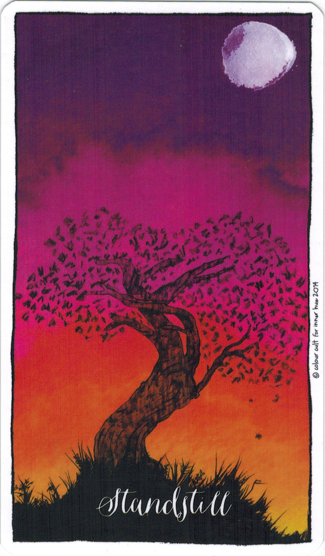Ý nghĩa lá Standstill trong bộ bài Connected & Free - The Alchemist's Oracle