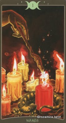 Ý nghĩa lá Ace of Wands trong bộ Book of Shadows Tarot - So Below