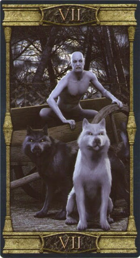 Lá VII. The Chariot – Vampires Tarot of the Eternal Night