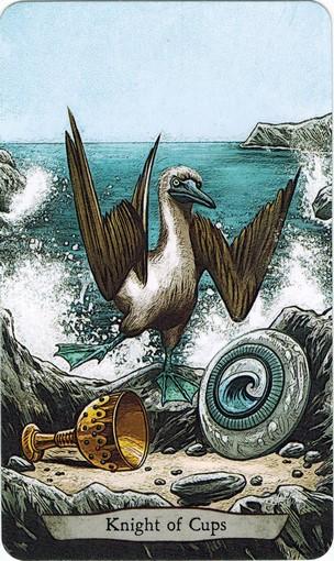 Ý nghĩa lá Knight of Cups trong bộ bài Animal Totem Tarot